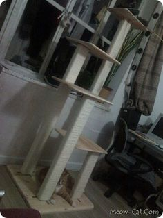 New place, new cat tree... The boys' old one is drooping and needs a replacement! DIY Cat Tree - w/ plans