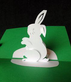 Rabbit pop-up card