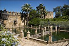 Royal Gardens and Ponds | Cordoba Giralda, Spain