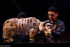 handspring puppet company - Google Search