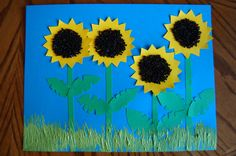 sunflowers - directions at link