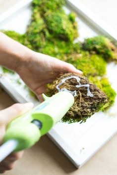 How to Make a Carefree Moss Garden - Dalla Vita - Jardin Vertical Fachada Moss Wall Art, Moss Art, Diy Wall Art, Wall Decor, Jardin Vertical Diy, Vertical Garden Diy, Vertical Gardens, Plant Wall, Plant Decor