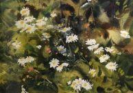 Flowing Daisies Daisies, Pastel, Watercolor, Sculpture, Artist, Prints, Painting, Pen And Wash, Margaritas