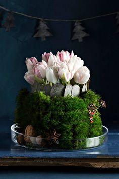 Tulppaanit kukkasienessä Tulppaanien varret on leikattu lyhyiksi ja kukat on painettu vieri viereen kukkasieneen. Lasimaljan reuna on koristeltu ensin eukalyptuksen lehdillä. Kuumaliimalla kiinnitetyt lehdet saa irti maljasta helposti. Lopuksi purkin ympärille on aseteltu sammalta, joka pysyy ryhdissä kietomalla sen päälle ohutta metallilankaa. Asetelma on viimeistelty tähtianiksin, pähkinöin ja muutamin kukkasin.