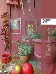 Lakbear has shared 1 photo with you! Diy Recycle, Recycling, Marsala, Pantone, Planter Pots, Photos, Pictures, Upcycle, Marsala Wine