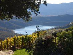 Kuleto Estates ~ Napa Valley <3