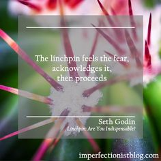 "A quote from Linchpin: Are You Indispensable?, our Imperfectionist Book this week:  ""The linchpin feels the fear, acknowledges it, then proceeds."" -Seth Godin"