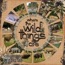2012-Disney-TH-Safari2_web.jpg