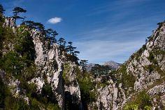 Imagini pentru cheile tasnei Mount Rainier, Mountains, Nature, Travel, Naturaleza, Viajes, Destinations, Traveling, Trips