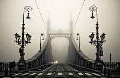 Armin Marten    Great Black & White shot!