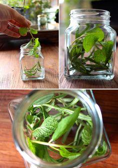 Make it: Rosemary & Mint Hair Oil Recipe | Little Green Dot