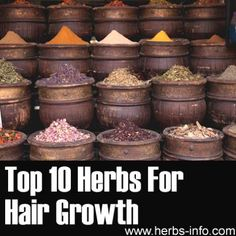 Best 10 Herbs For Hair Growth...http://homestead-and-survival.com/best-10-herbs-for-hair-growth/