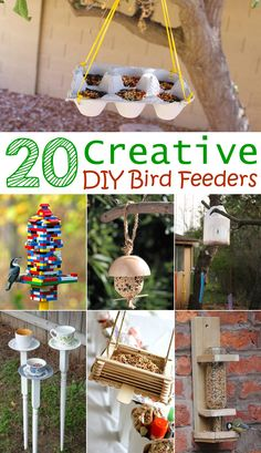 Make a simple bird feeder from items found around your house!