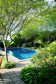 so there are trees (and therefore leaves) over this pool...hope for my backyard?