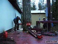 Lumberjack Wizardry