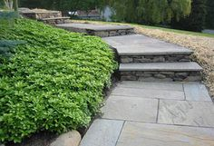 flagstone walk | Flagstone Walkway
