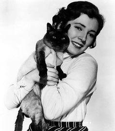 0 valentina cortese, italian actress, holding her cat