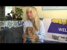 Dogs Could Detect Cancer in Humans - WATCH THE VIDEO.    *** dogs detecting cancer in humans ***   Laurie Malone and her dogs, Penny and Sprout, are working towards a less-invasive way to detect cancer. Video credits to the YouTube channel owner