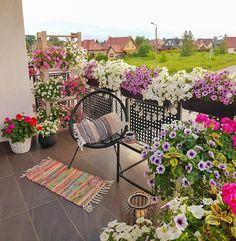 Small Balcony Design, Small Balcony Garden, Balcony Flowers, Small Balcony Decor, Balcony Plants, House Plants Decor, Terrace Garden, Indoor Garden, Balcony Decoration