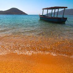 Lake Malawi! #tentree #explorenature