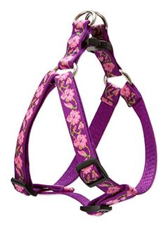 LupinePet Rose Garden Step in Harness for Small Dogs, 3/4... https://www.amazon.com/dp/B01C2EWFPE/ref=cm_sw_r_pi_dp_x0wNxb3MGH2ST  100 each