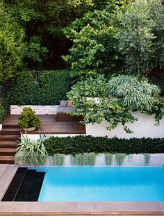 4 of the best swimming pool designs. Photography by Brigid Arnott. Design by Good manors. Small Swimming Pools, Best Swimming, Swimming Pools Backyard, Swimming Pool Designs, Outdoor Pool, Outdoor Gardens, Patio Chico, Tropical Pool Landscaping, Landscaping Ideas