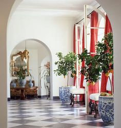 Mary MacDonald - love the lemon trees potted in big blue and white planters and the floors