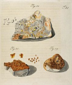 Wulfen, Franz Xavier(1785) Crystals Minerals, Rocks And Minerals, Names Of Gemstones, Mineralogy, Mineral Stone, Earth Science, More Pictures, Fossils, Vintage Prints