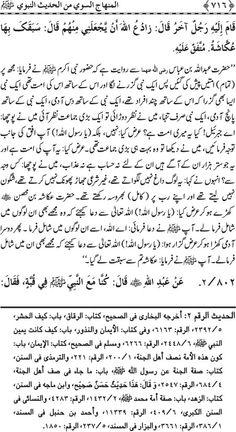 Al Minhaj us Sawi Page # 716