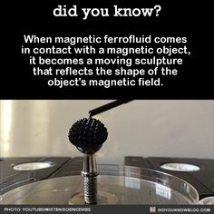 When magnetic ferrofluid comes in contact with a magnetic object, it becomes a moving sculpture that reflects the shape of the object's magnetic field. Source