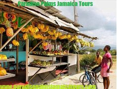 There is no place like Jamaica on planet earth as the culture and the people are so unique. I have been told that people from all over the world are coming to take sample from the soil, and studying the people trying through scientific methods to find out how come we are so small yet so powerful for a comparatively small island. What are your thoughts? www.paradisepalmsjamaicatours.com