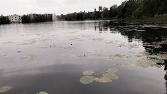 Local fishingpark. #uusikaupunki #nystad #fishing #fishingpark #ruokolanjärvi Niagara Falls, Fishing, River, Nature, Outdoor, Instagram, Outdoors, Naturaleza, Nature Illustration