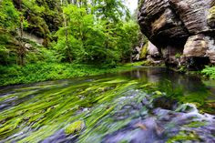 Kamenice River Edmund Gorge Hiking Bohemian Switzerland National Park