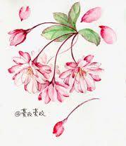 Image result for 节气手帖