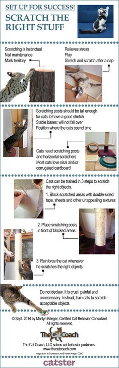 "How to Train Cats to Scratch Only Where They Should build a scratching post with a 24"" square of 5/8"" plywood and 42"" 4x4 wrapped in sisal rope or wrapped in carpet remnant ( save from new install or salvage from clean home removal )"