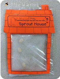 Sprout house template and inside a seed exploration sheet FREEBIES