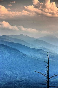I ♡ seeing ranges of mountains, one after another ~ such beauty,  in purples & blues | The 30 Most Beautiful Nature Photography
