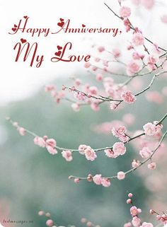 Cute Wedding Anniversary Wishes For Husband (With Images)<br> Anniversary Poems For Husband, 1st Wedding Anniversary Wishes, Anniversary Quotes For Husband, Happy Anniversary My Love, Happy Marriage Anniversary, Sister Wedding, Qoutes, Parents, Cherry