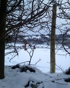 Snow in Wales 2013