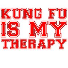 Kung Fu Is My Therapy T Shirt and Hoodie