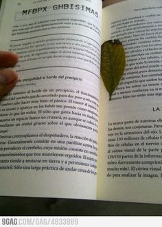 The most ecological (and cheapest) bookmark