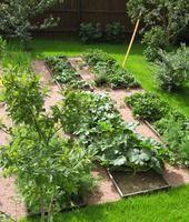 Продолжаем публиковать подборку оригинальных советов для огородников и садоводов. Ведь многие из них, возможно, скоро из оригинальных превратятся в обыденные в ваших дачных и садоводческих хлопотах. И пусть ваши сады-огороды будут самыми успешными, урожайными, зелеными, плодоносящими и красивыми!