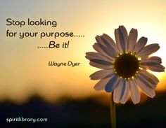 Stop looking for your purpose... BE IT! ~ Wayne Dyer