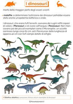 Tante schede didattiche dedicate ai dinosauri per bambini della scuola primaria in PDF da stampare e da usare come verifica di storia o approfondimento