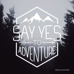 SAY YES TO ADVENTURE Three x stickers of every dollar earned will be donated to a charity that aids in the rescue and rehabilitation of children from sex trafficking. Singles Holidays, Single Travel, Illustration Vector, Cricut, Branding, Life Is An Adventure, Adventure Time, Screen Printing, 3d Printing