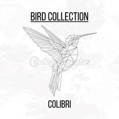 Полигональные геометрические колибри — Векторное изображение © aliakseizykau.gmail.com #106489496