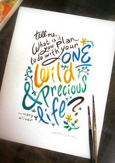 Your One Wild & Precious Life by Aaron Zenz