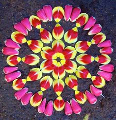 Arizona artist and photographer, Kathy Klein, has made the mandala into a unique art form using flowers, pine cones, leaves and other botanical . Rangoli Designs Flower, Flower Rangoli, Flower Garlands, Flower Petals, Mehndi Designs, Red Flowers, Mandala Art, Flower Mandala, Flower Art