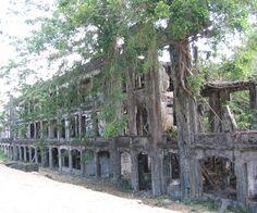 Abandonned buildings at the Pacific War Memorial, Corregidor Island, Manila bay, Philipines       I   Artificial Owl