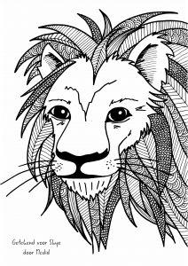 kleurplaten volwassenen leeuw